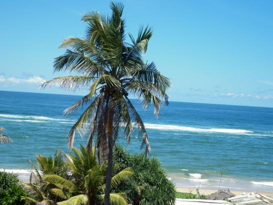 Colombo Sea View Hostel