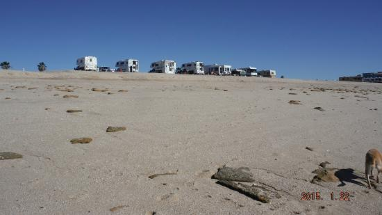 Campground From Beach Surf Line Picture Of The Reef Rv