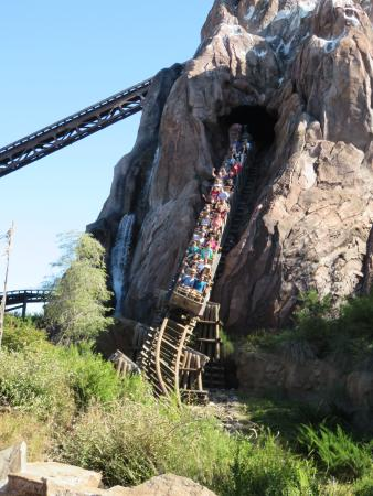 The Mount Everest ride at Disney's Animal Kingdom - Picture of ...