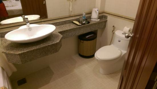 Roseland Inn Hotel : Room 191 floor 9 (top floor) - toilet. Clean, great hot water.