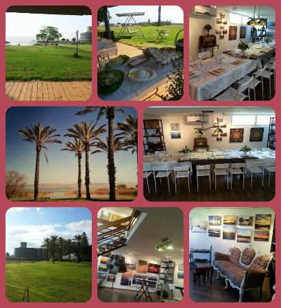 Lake Gallery Israel: ART GALLERY, CAFE & GIFT SHOP all in one!!!