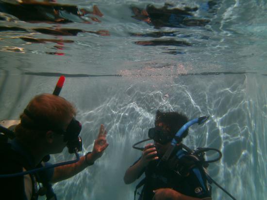 Blue Divers Resort: duikles in het zwembad