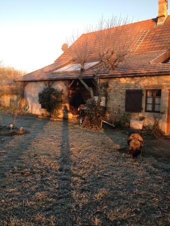La Lison : La maison vue du jardin
