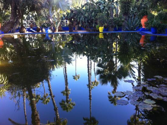 Riad Bousskri: Jardin Majorel