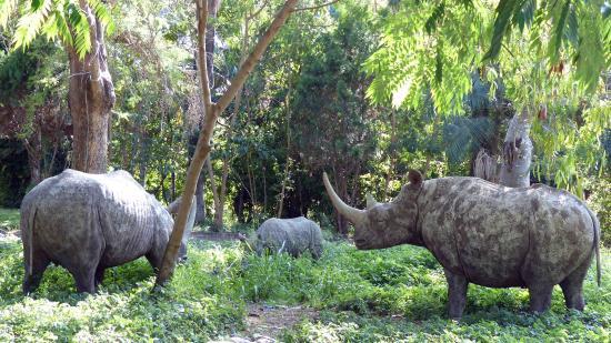 Ngurdoto Mountain Lodge : Rhino Figuren am Eingang