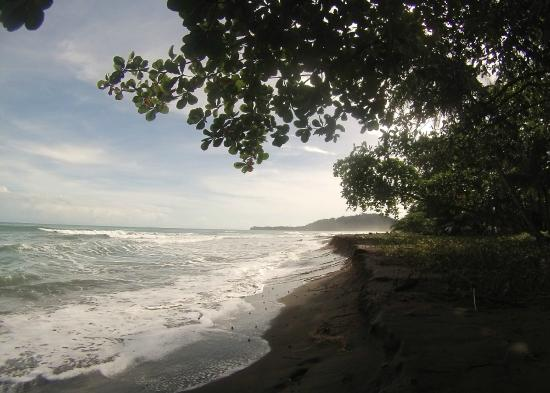 Mother Dear Ocean Cottages: The beach