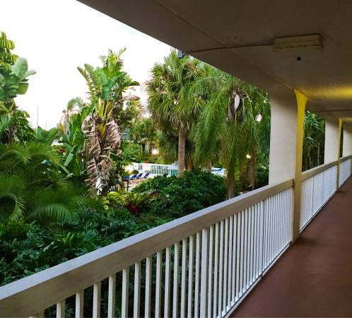 Hampton Inn Clearwater Central : View from outside my room.
