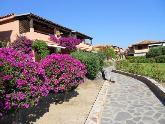 Photo of Baia De Bahas - Apartments Golfo Aranci