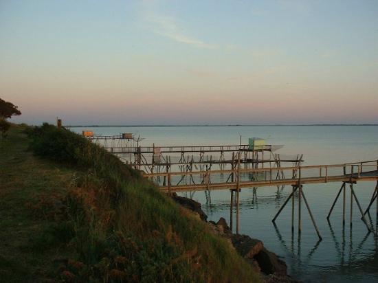 Carrelets port des barques rochefort oc an photo de office de tourisme rochefort ocean - Office de tourisme rochefort ocean ...