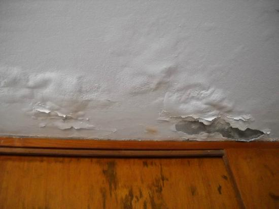Casa Bella Miraflores: Humedad en el techo.