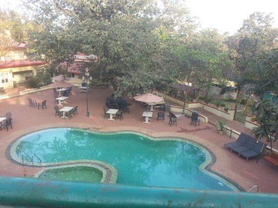 Adamo The Resort: pool pic