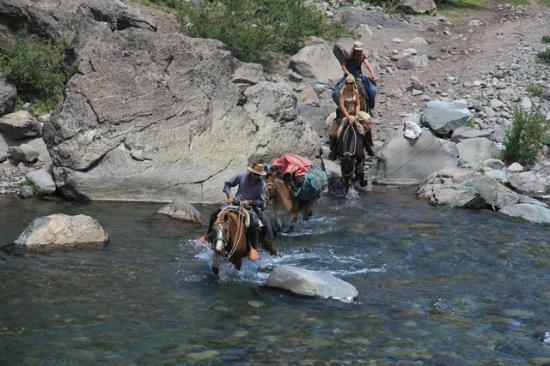 Biobio Region, Chili : Cruce de río durante una cabalgata