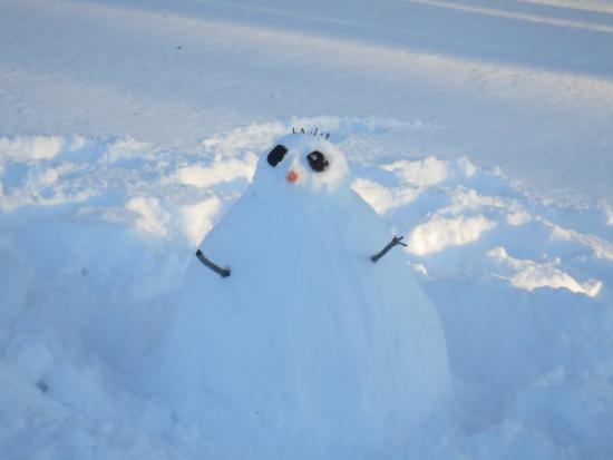Slater Memorial Park: creepy snowman