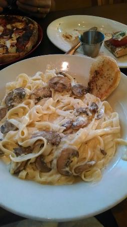 Lillo's Tuscan Grille: Fettucini Alfredo. Add mushrooms for only 50 cents more!