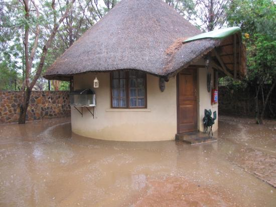 Mokolodi Backpackers: The flood water dried up within hours