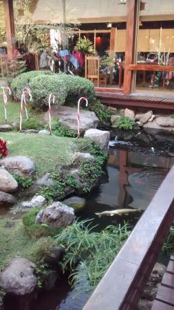 Suehiro: El jardin