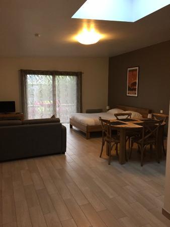 Résid'Spa - Loire & Sèvre : Chambre / salon