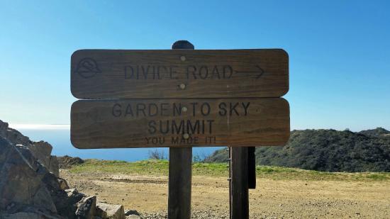 Sky Garden Walk: Garden To Sky Is A Shorter Walk