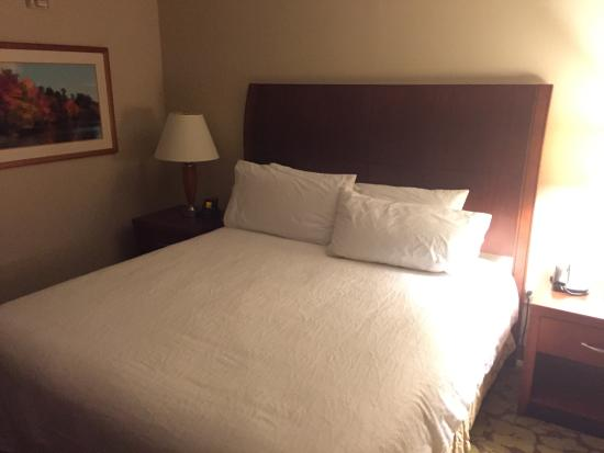 Hilton Garden Inn Tysons Corner: Bed