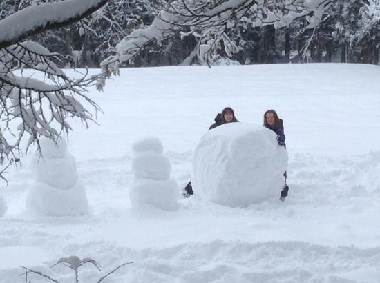 Restaurant & Hotel Traumerei : now that's a big snowball!