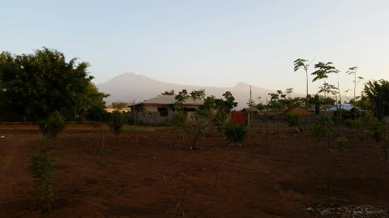 Twiga Home: View of Kili outside the compound