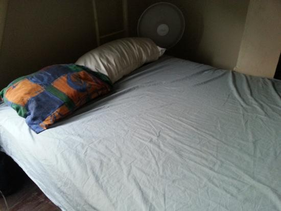 Planet Inn Backpackers : Bed