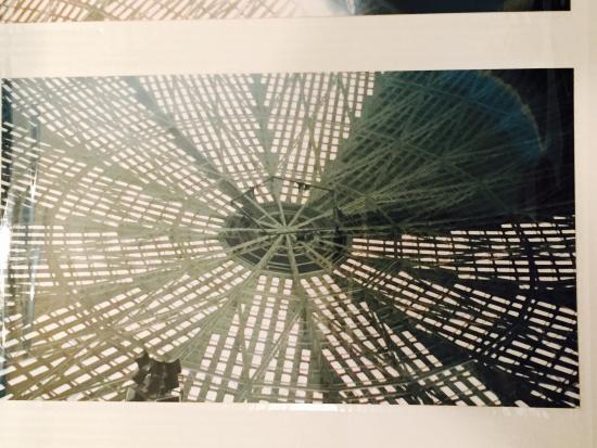 Astrodome USA: The Dome