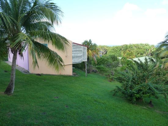 """Coeur Caraibes: jardin depuis la terrasse de """"Tobago"""""""