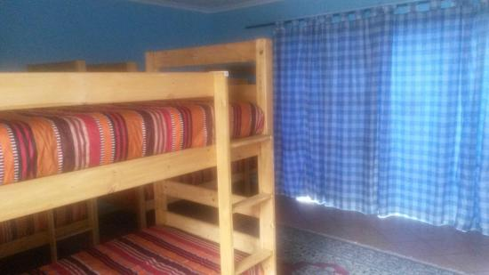 The Birches Backpackers: Birches Cottage beds