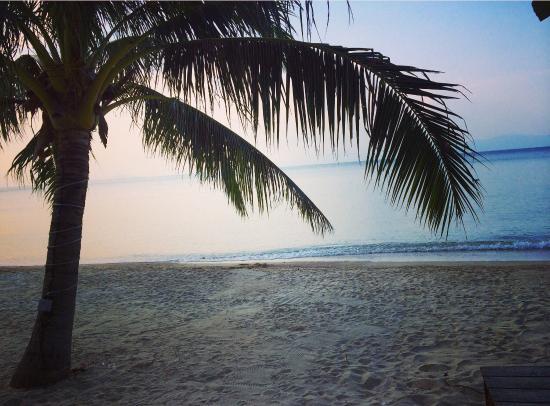 Phangan Beach Resort: Absolutely gorgeous