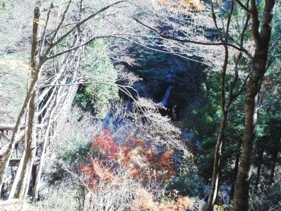 Okuiya Niju Kazurabashi Bridge: 山腹の中に