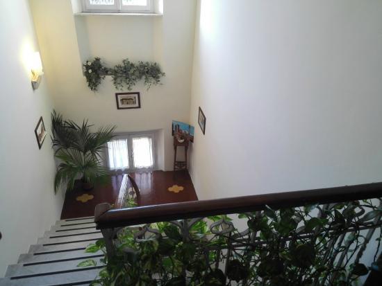 escaleras. - Foto di Hotel Soggiorno Athena, Pisa - TripAdvisor