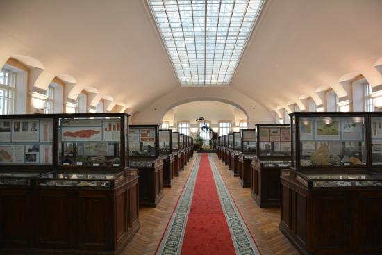 Central Scientific Research Geological Museum