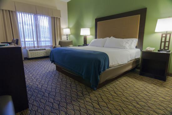Holiday Inn Express Hotel & Suites Winchester: Standard King Room