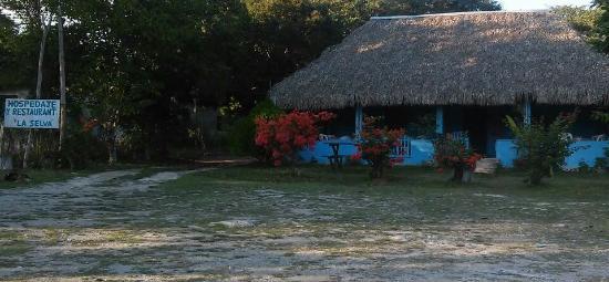 Selva Cafe