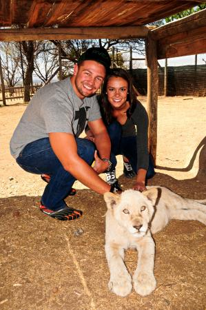 Broederstroom, Afrique du Sud : Lion cub