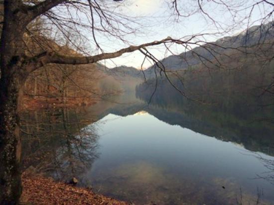 Biogradska Gora National Park : Biogradsko jezero in December 2014