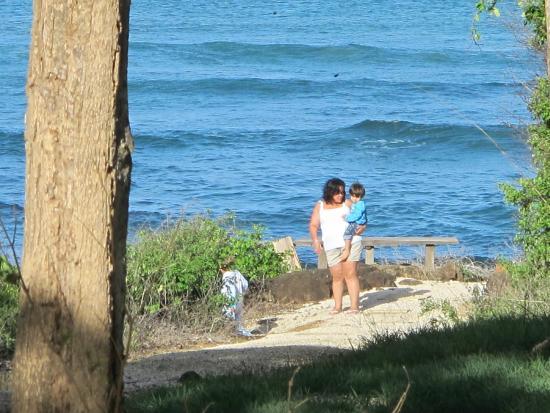Villa Alegre - Bed and Breakfast on the Beach: The beach access, overlook.