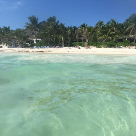 The Beach Tulum Updated 2018 Prices Hotel Reviews Mexico Tripadvisor