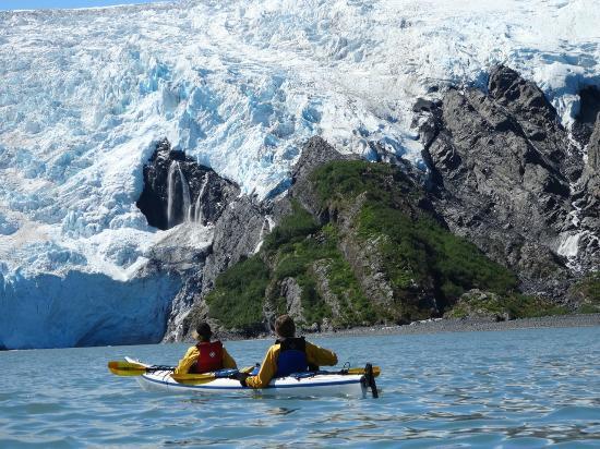 Alaska Sea Kayakers - Day Trips