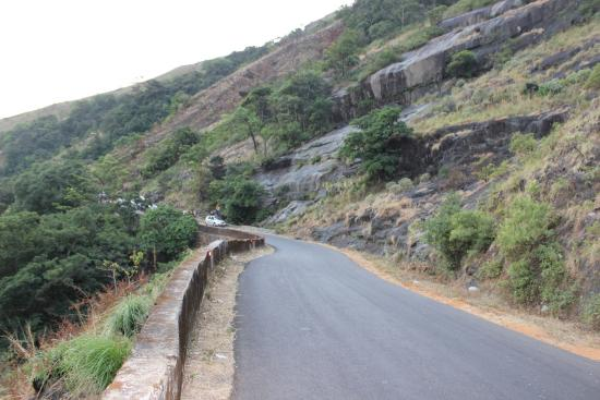 Mudigere, India: Charmudi Ghat Nature