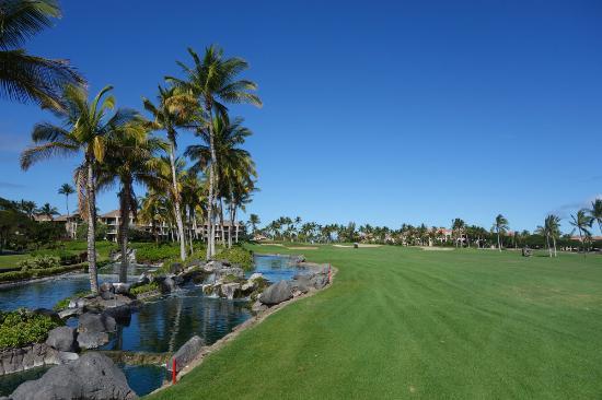 Waikoloa Beach Golf Course: 景色も良いです