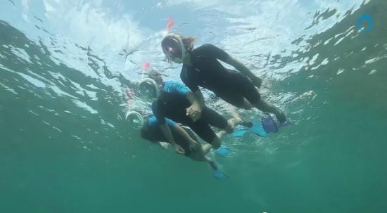 EZ Breathe Snorkel Rentals