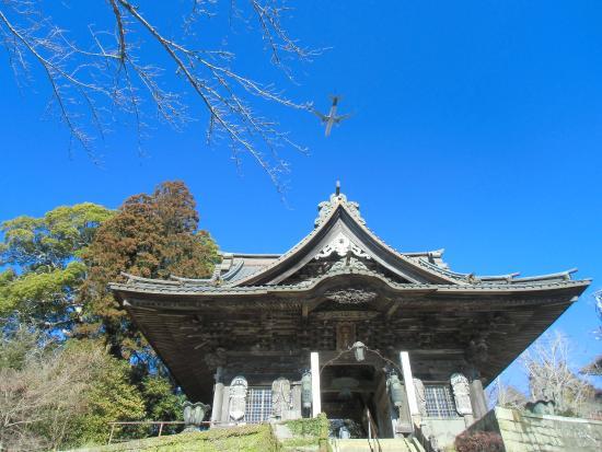 Shibayama Nioson Kannon Temple: 芝山仁王尊 仁王門と飛行機