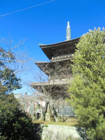 Shibayama Nioson Kannon Temple: 三重塔