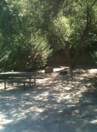 Three Rivers, CA: Campground 3