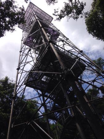 Museu da Amazonia (MUSA): Torre de 42 metros do museu musa