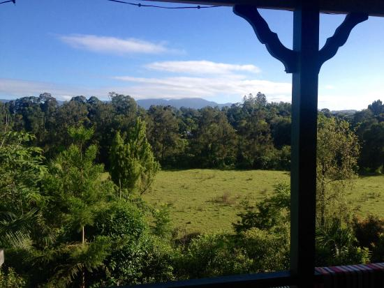 Bellingen YHA - Belfry Guesthouse : The refreshing view that our room overlooks