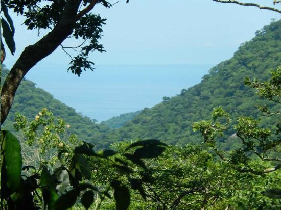 GO GAY! Jungle Adventure : Zip line view