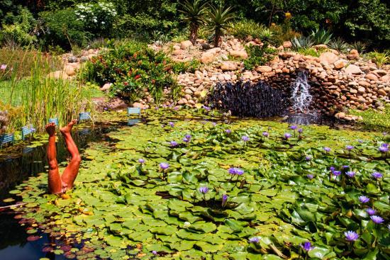 Jardim Botanico Plantarum